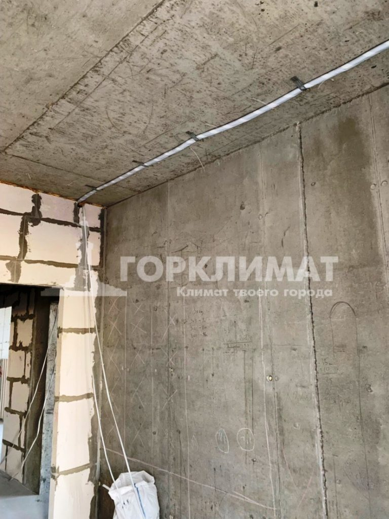 photo5242251685395541210